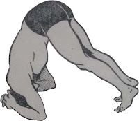 Shirshasan or Head stand pose - Steps and Benefits Step 2