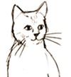 भूखी बिल्ली