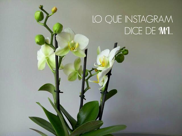 Instagram Otro día Perfecto