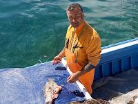 Naše bolske priče Bol slike otok Brač Online
