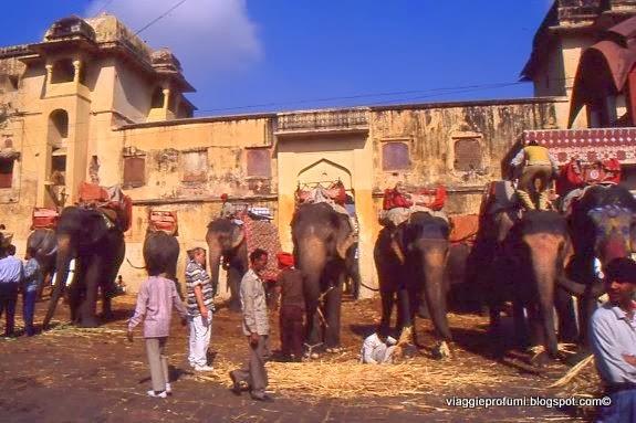 Jaipur, salendo a Fort Amber