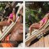 #Baecation Photos of Usain Bolt & his girlfriend Kasi Bennett