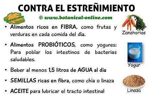 Blog de plantas 6 soluciones pr cticas y sencillas contra - Alimentos que causan estrenimiento ...