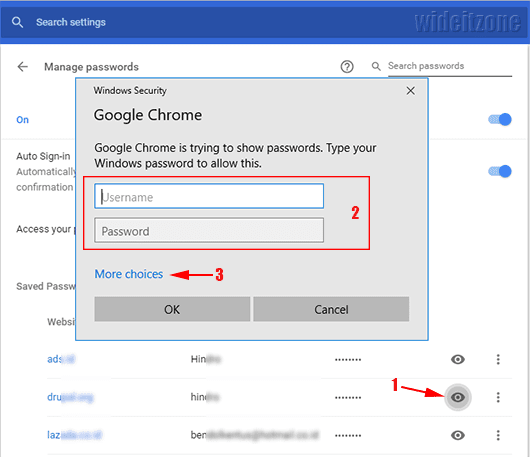 View saved passwords in Google Chrome on Windows