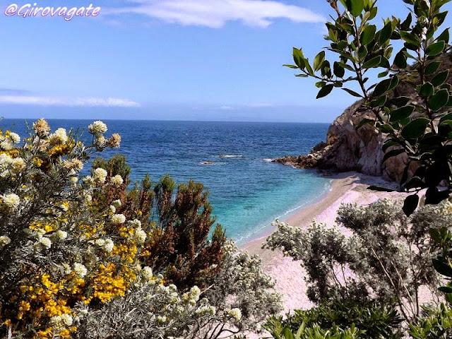 elba spiaggia sorgente