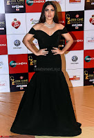 Bhumi Pednekar in Black Walk the Red Carpet of Zee Awards 2017i ~  Exclusive Galleries 014.jpg