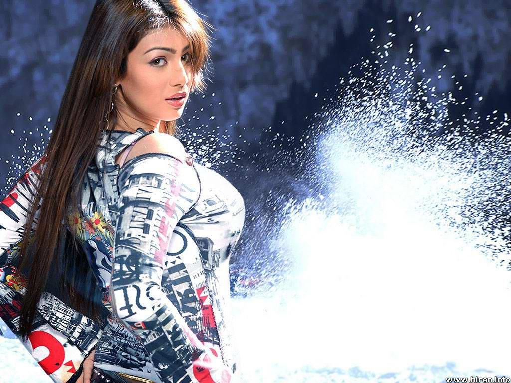 All celebrity in ayesha takia high quality hot wallpaper - High resolution wallpaper celebrity ...