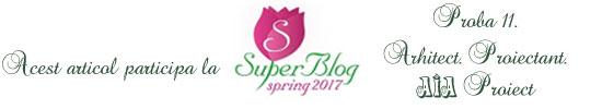 http://super-blog.eu/2017/03/24/proba-11-arhitect-proiectant-aia-proiect/
