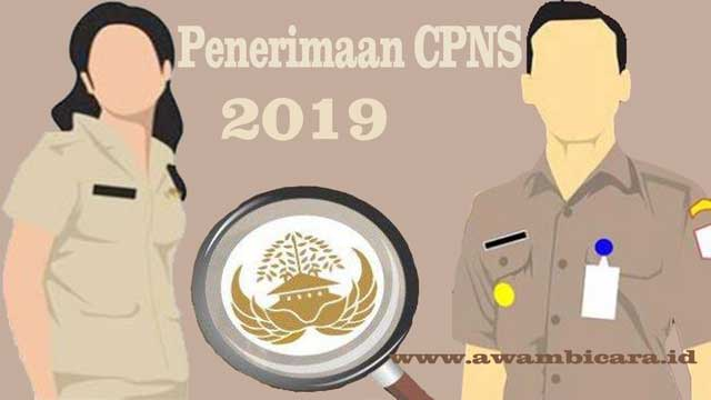 tips ampuh lulus tes cpns 2019