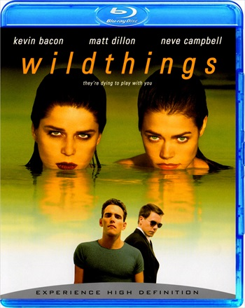 Wild Things 1998 Dual Audio Hindi 720p BRRip 900mb