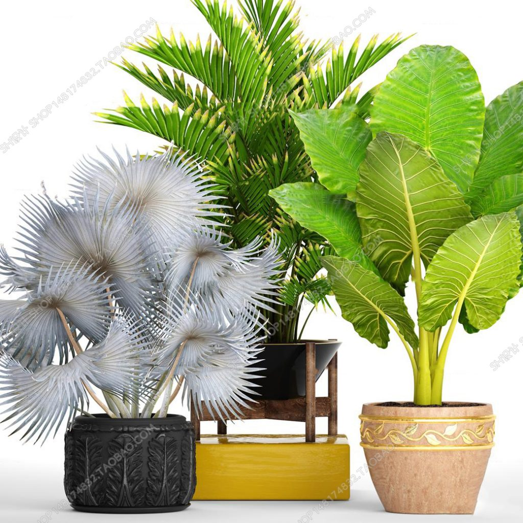 3d Plant Model 34 Free Download | Library Free 3D