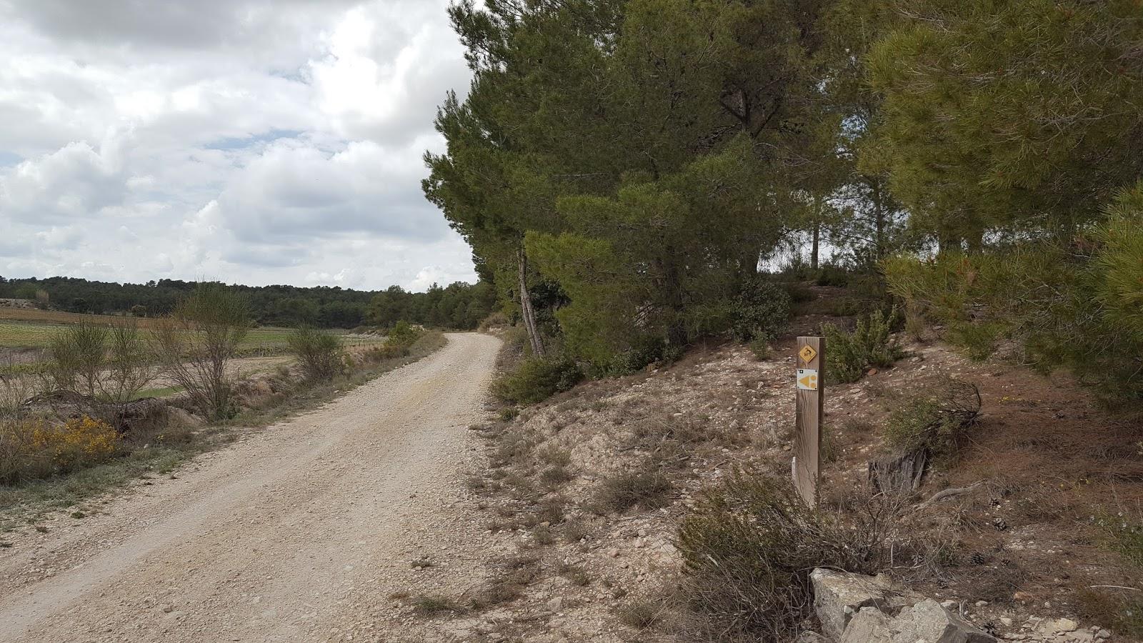 Roda la Vall d'Albaida - Serra Grossa