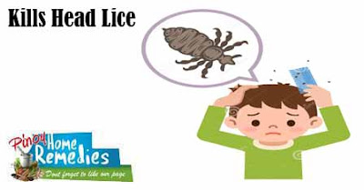 10 Amazing Uses Of Rubbing Alcohol: Head Lice