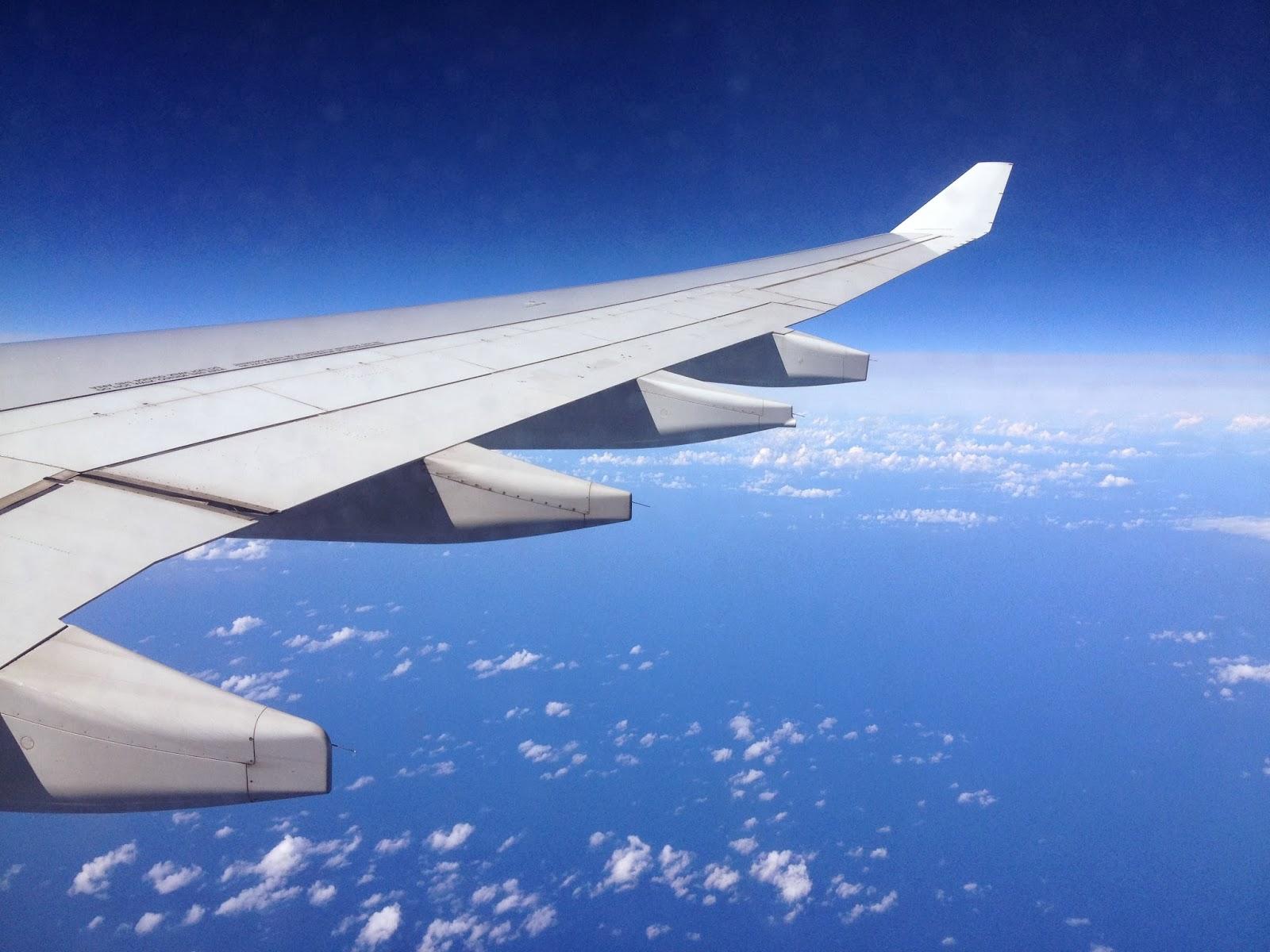 Dianamiaus Sobrevolando el Océano Atlántico