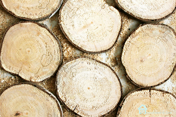 tree branches, logs cut for home decor