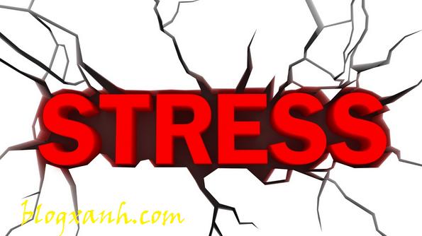 Stress tốt hay không tốt?