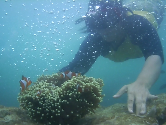 Spot foto pada pada air