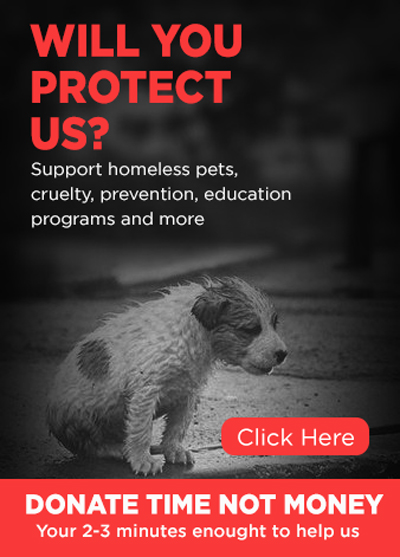 https://www.happywishesfor.com/2018/12/will-you-protect-us-please-help-us-in.html