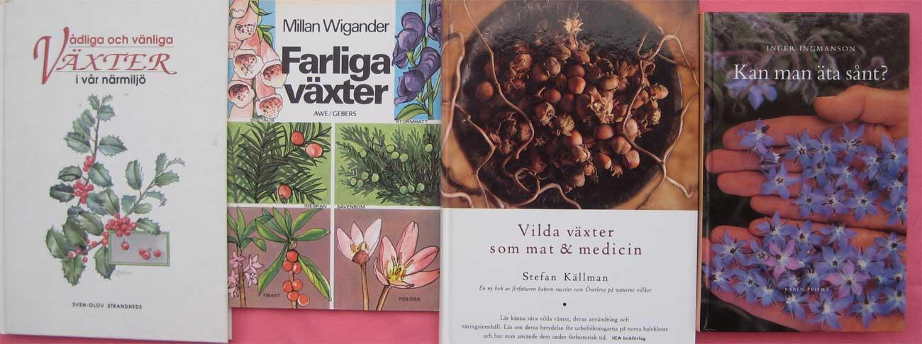 vilda växter som mat & medicin