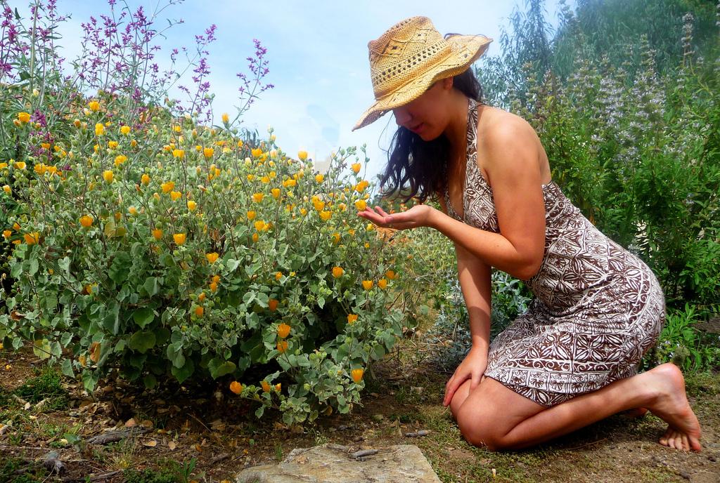 The healing power of gardening