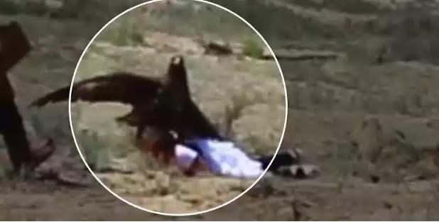8χρονη δέχτηκε επίθεση από αετό στο Κιργιστάν (βίντεο)