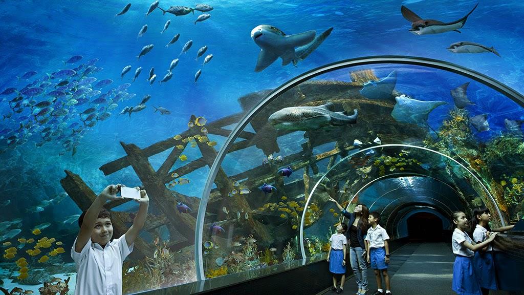ialah salah satu obyek wisata utama di Marine Life Park yang terletak di dalam Pulau Sen S.E.A Aquarium, Aquarium Laut Terbesar di Dunia
