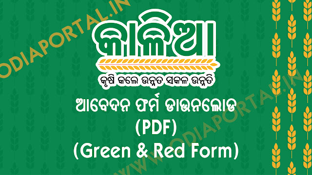 "Download Odisha ""KALIA"" Yojana Apply Form (Green and Red Form PDF), Krushak Assistance for Livelihood and Income Augmentation (KALIA) scheme is one of newest scheme or Yojana by Odisha Government for farmers around the state. Farmers should apply for KALIA scheme as soon as possible to get most from this scheme. The following are two major forms for Apply for KALIA YOJANA. kalia jojana form, application form, green form kalia yojna, kaliya jojana form download pdf"