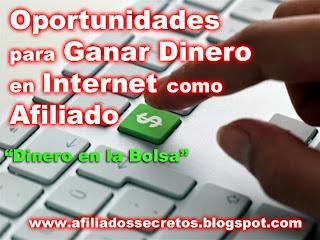 oportunidades para ganar dinero en internet