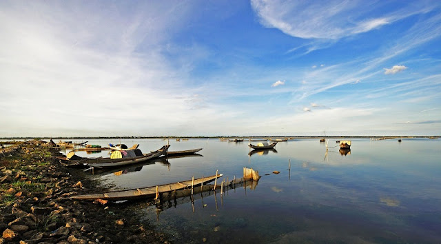 Tam Giang Lagoon: full of all kinds of life 1