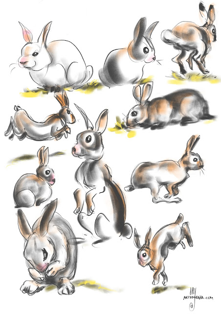 Rabbit gestures By Artmagenta