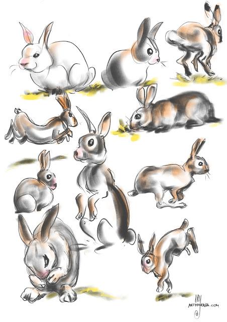 Rabbit gestures By Artmagenta