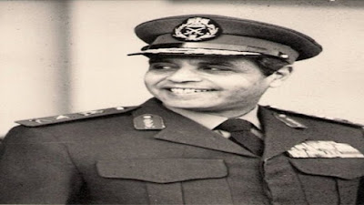 المشير محمد علي فهمي