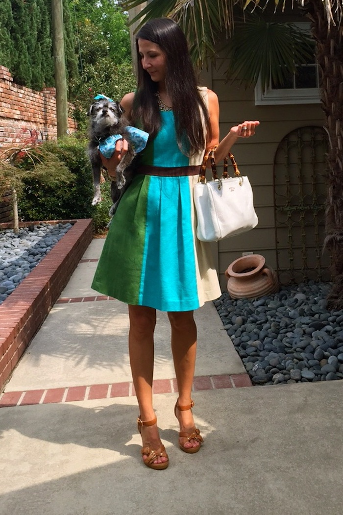 Wearing a line dress with large green, blue, and cream vertical stripes. Holding small dog with matching outfit.