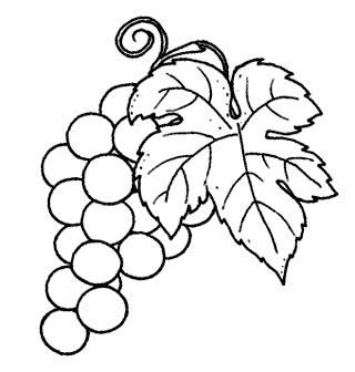 Meyve Sebze Kolay çizim Ve Boyama Renksiz Resimler