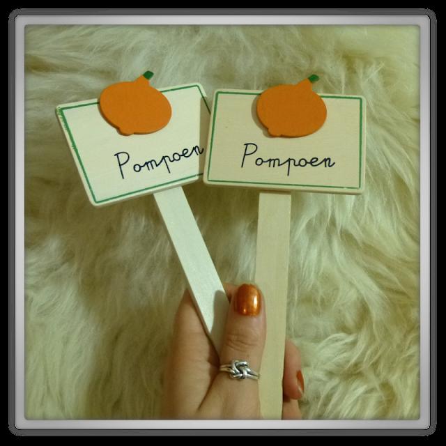 Dille & Kamille pompoen etiket bordjes