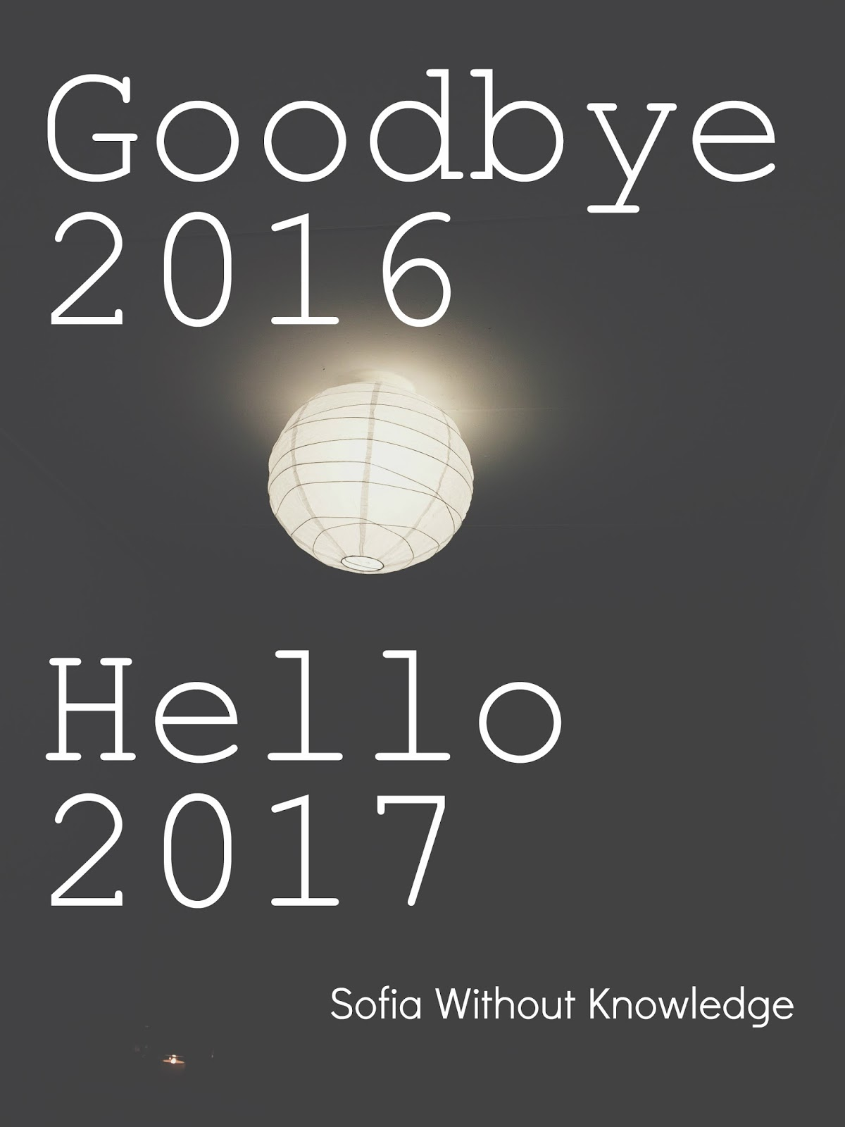 Goodbye 2016, Hello 2017 | Sofia Without Knowledge