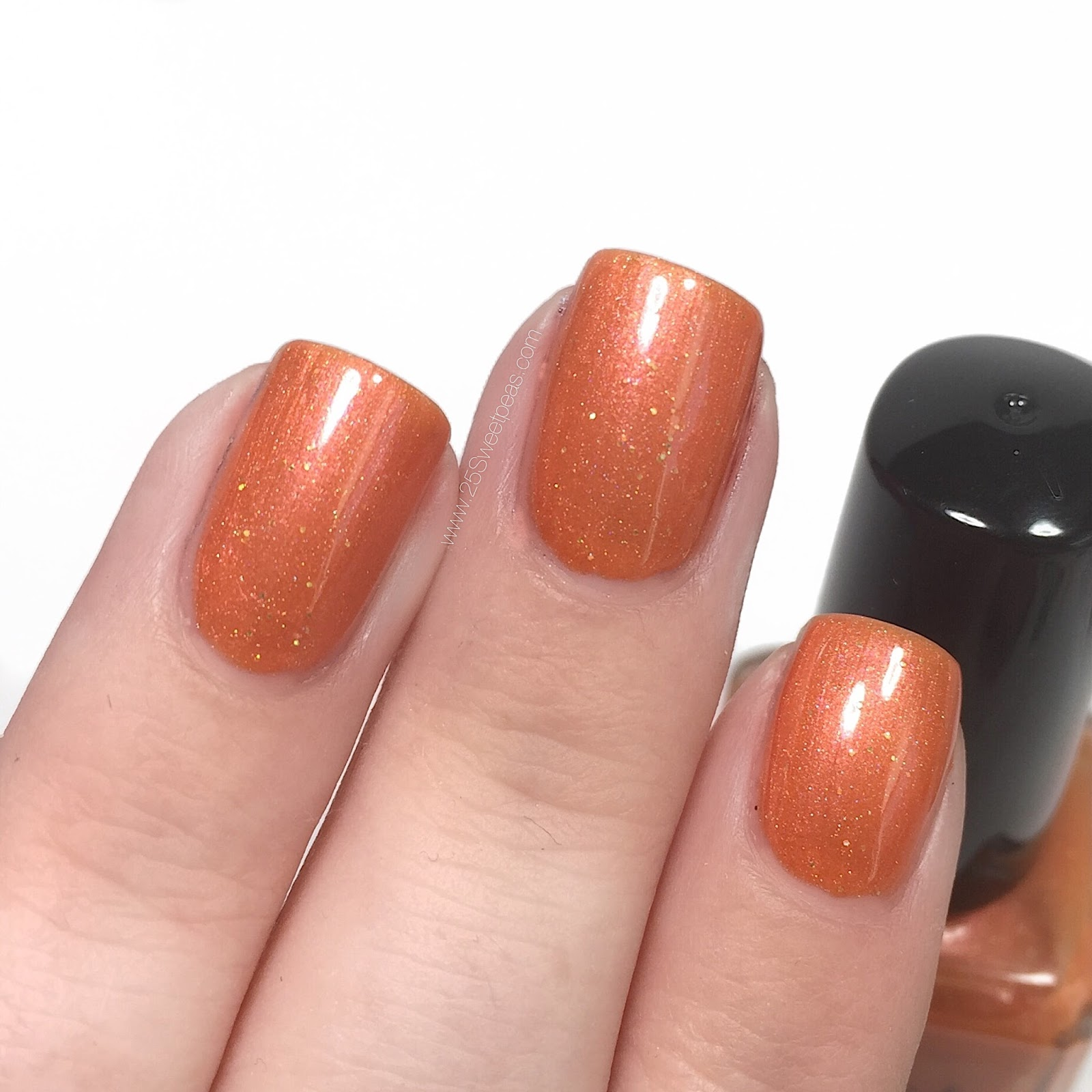 Smokey Mountain Lacquer Amaryllis