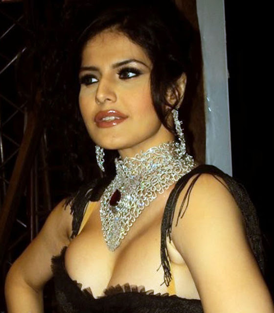 Zarine Khan Hottest Picture - Kiss,Sexy Videos,Bikini -3320