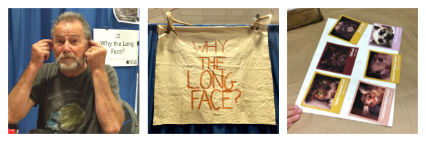 Boston Festival of Indie Games_New England Fall Events_Tabletop Games_Why the Long Face game