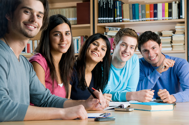 Management Dissertation Help