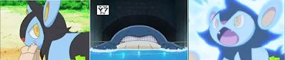 Pokémon -  Capítulo 5 - Temporada 12 - Audio Latino