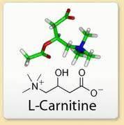 καρνιτίνη