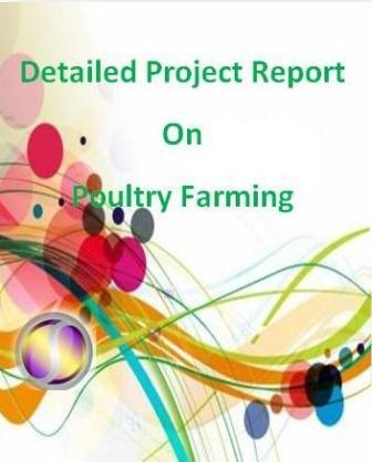 Project Report on Poultry Farming