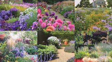 Plantas, jardines y otras hierbas compartidas en Instagram (2017 best nine on Instagram)