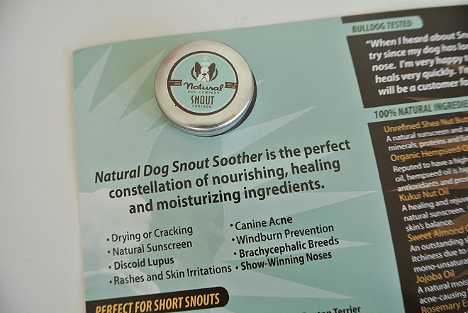 Natural Dog Company Snout Shooter French Bulldog
