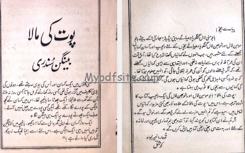 Baingan-Sundri-Aur-Doosri-Kahaniyan book