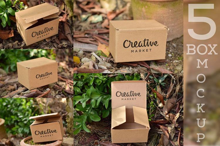 5 Cardboard Mockup PSD
