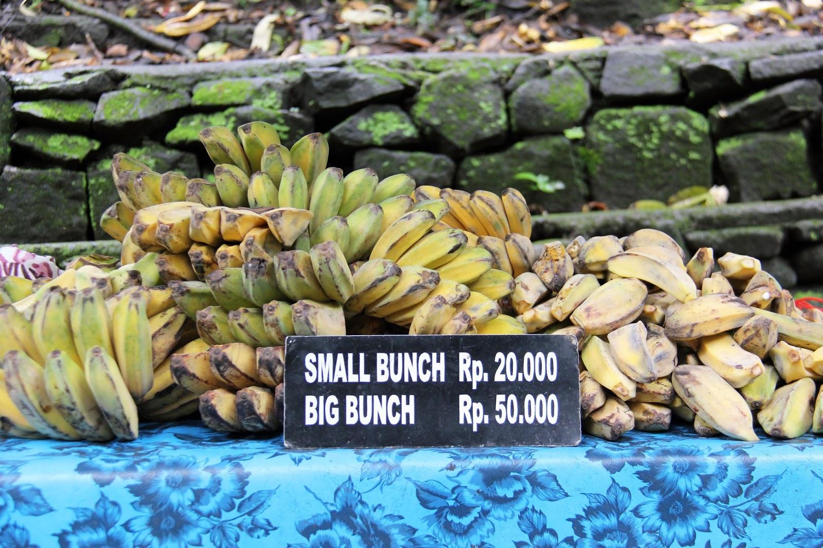 Ubud, Bali | Sevengrams