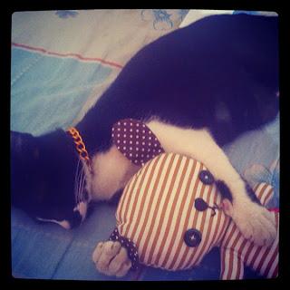 Puciy dan boneka kesayangannya. Boneka hasil dapet ngekuis.