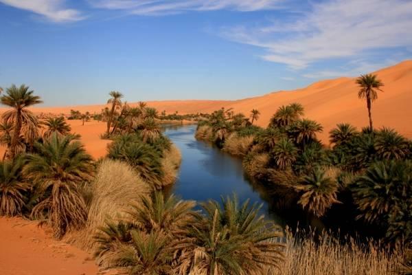 توزر جوهرة الصحراء